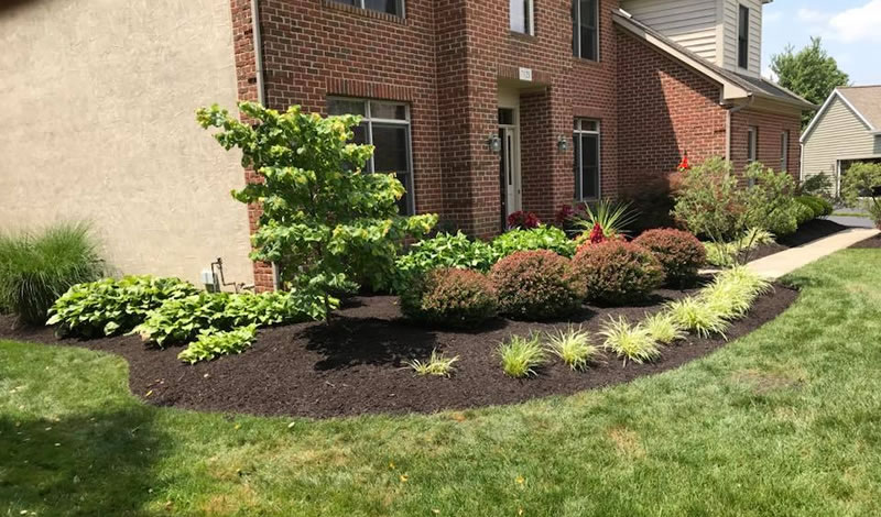 Bark Mulch Installation