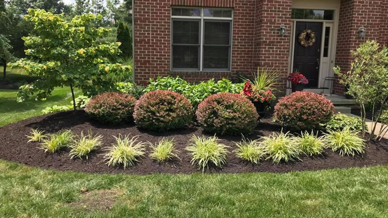 Popular Softscape Landscaping Ideas - Lawn Care, Landscaping ...