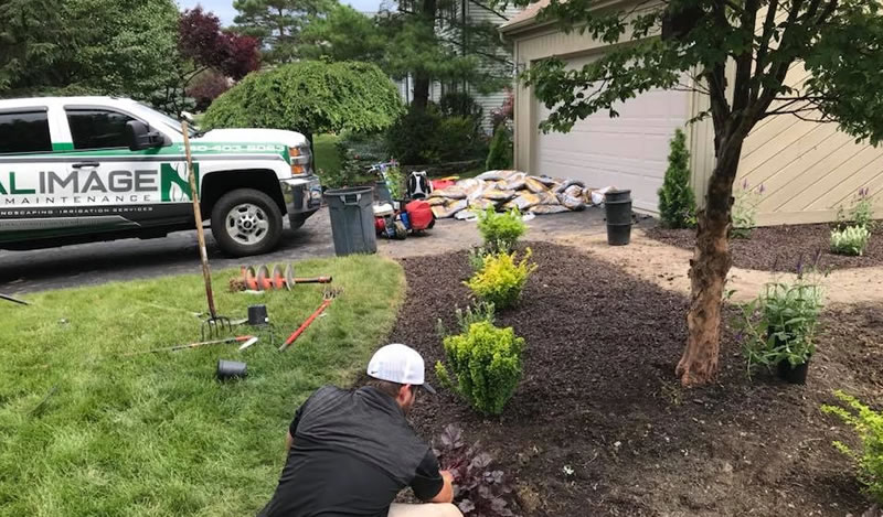 Landscaping Installation Services