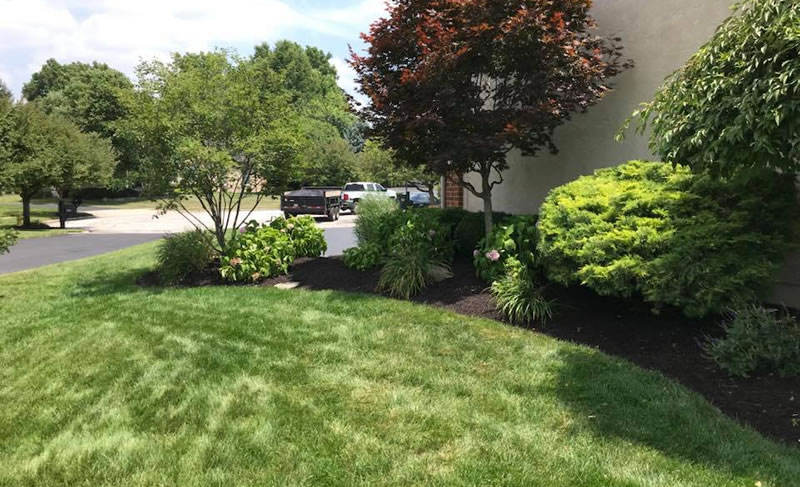 Landscaping Maintenance, Property Maintenance and Groundskeeping.