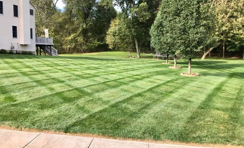 Lawn Care Services Provided By Natural Image Property Services.