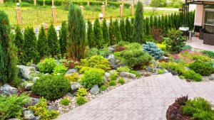 Low Maintenance Backyard Landscaping Ideas Without Grass