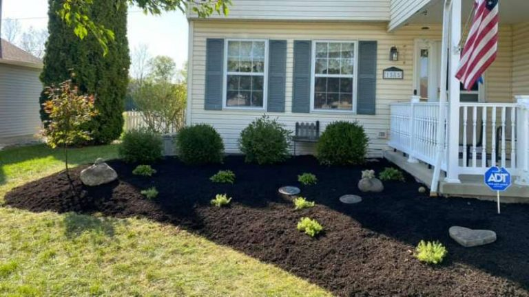 Yard Cleanup For Curb Appeal In Newark, OH